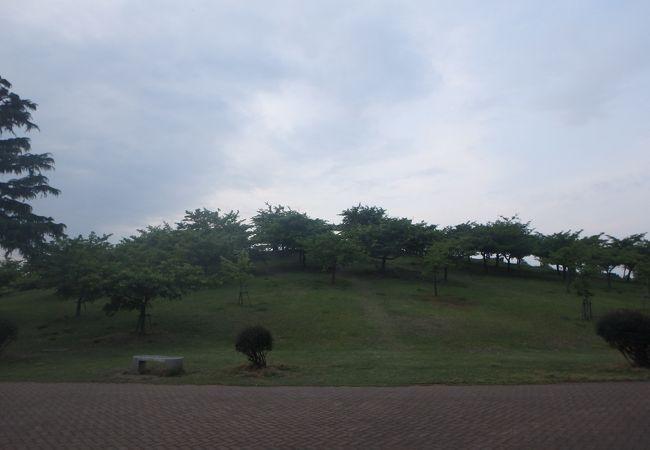 めぼしい施設はないが、広々した公園