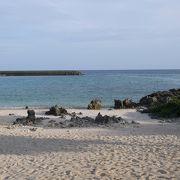 ウミガメ遭遇確率の高いビーチ