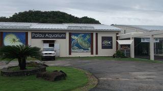 パラオ国際サンゴセンター