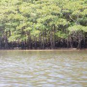 西表島で2番目に大きな川