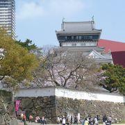 お城と桜と川縁の公園と・・・・