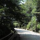 観音山公園