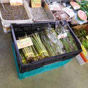 駅近の総合食品市場