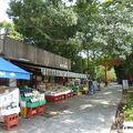 写真:魚市商店