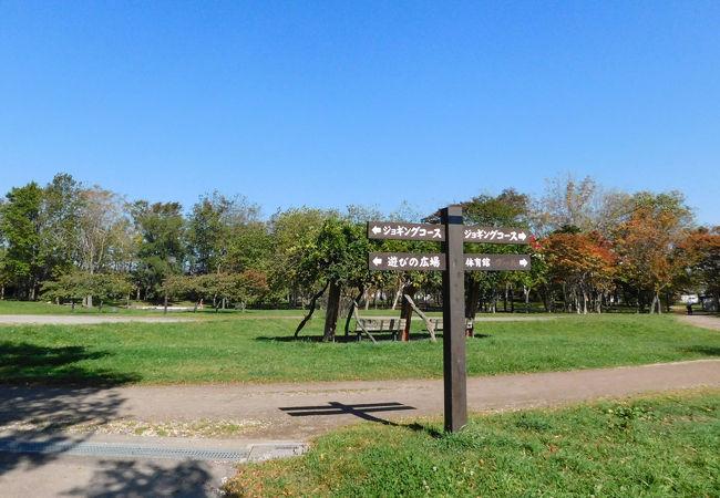 東室蘭駅近くの市民公園