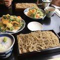 写真:鎌倉 松原庵 欅