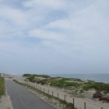 大浜河岸東側