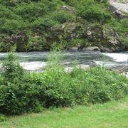 長良川を臨めます