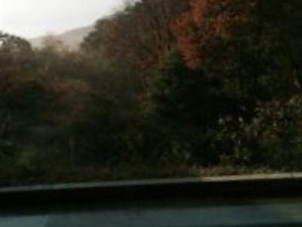 虎杖浜温泉 ホテル いずみ 写真