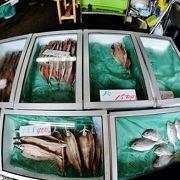 勝浦干物土産は地元推奨のしぎ商店で 温暖化で不漁が続く日本近海の魚 送られ来た干物セット国産、オランダ産、アラスカ産