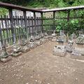 写真:武田信満の墓
