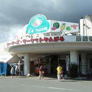 沖縄の果物、野菜を買うならここ!