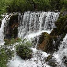 九寨溝 樹生瀑布