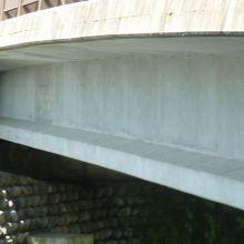 橋の上から飛び込み見物