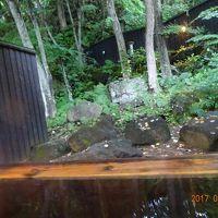 個室露天風呂から庭を見た風景・・・落ち着きます