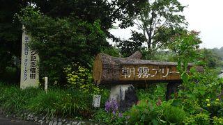 朝霧自然公園 (朝霧アリーナ)