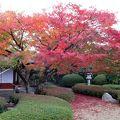 写真:松風園