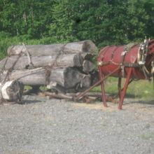 付近には、幌加内の開拓時代を彷彿とさせる展示も見られます