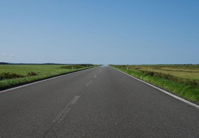 広大な原野にどこまでも真っ直ぐな道