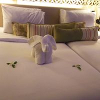 ベッドに象さん