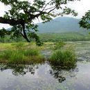 観音沼森林公園