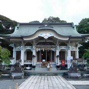 神秘的な大楠がある神社