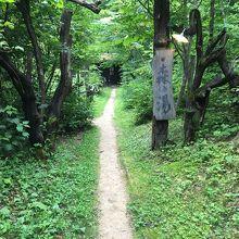 森の湯までの道程