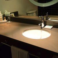 シングルボウルだけど広い!メイク用の拡大鏡はライト付き。