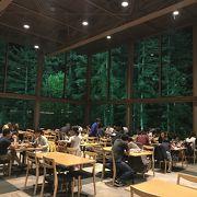 素敵な森のレストラン