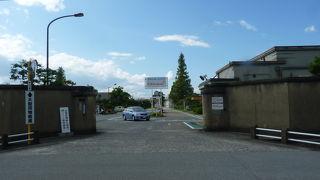 地元醤油工場見学