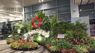 アジア屈指のハブ空港