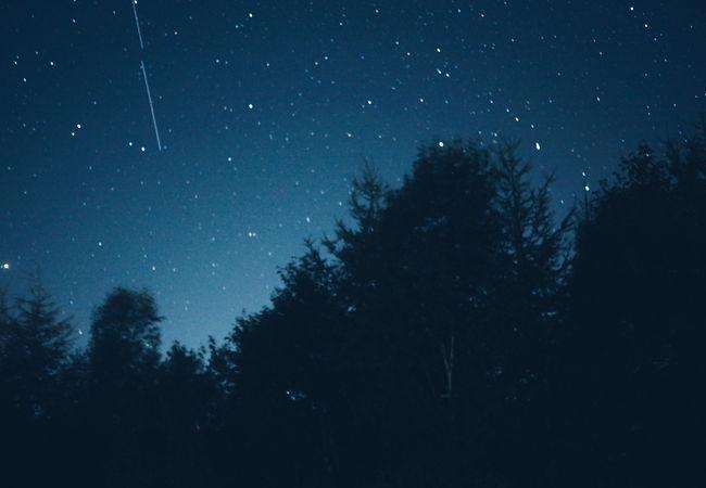 素晴らしい星空、流れ星もたくさん!