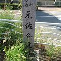 写真:元佐倉道跡