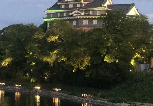 黒い烏城が緑に輝く