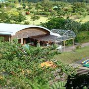マングローブ原生林近くにある学習施設