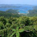 奄美群島国定公園