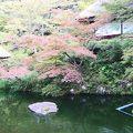イノダコーヒ店内から見える茶室と庭園