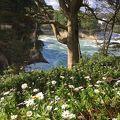 写真:天心遺跡記念公園
