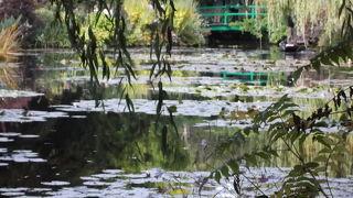 モネの池に行きたくて。