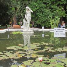 植物園』by koro カルロス タイス植物園のクチコミ【フォートラベル】