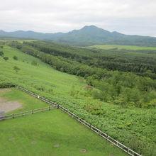 景観の一例