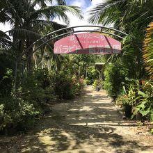 バラビドー観光農園