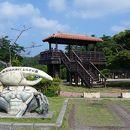 東村ふれあいヒルギ公園