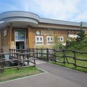山中にある水族館として近年人気急上昇しています