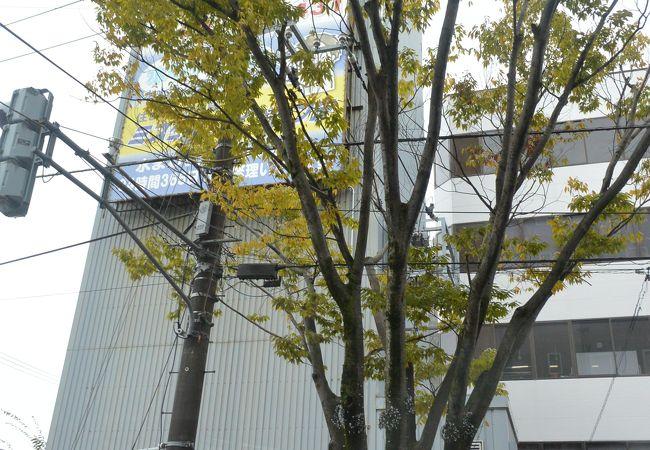 新潟駅南側
