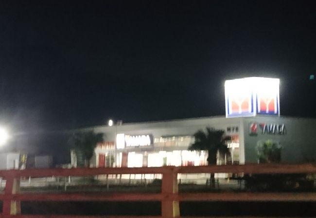 ヤマダ電機テックランド (種子島店)