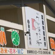 伊豆に行ったら、新鮮野菜はここで!