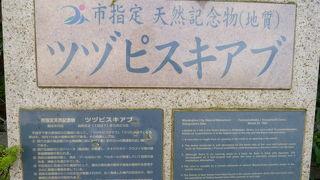 ツヅピスキアブ (大原嶺洞穴)