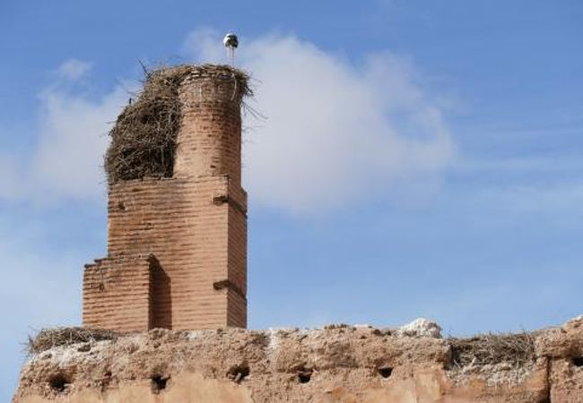 とても広い宮殿遺跡。塔の上にはしっかりコウノトリが居ました。