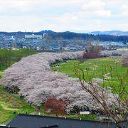 東北三大桜祭りとして有名.北上川を渡るため,非常に混雑します.